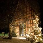 Weihnachten im Kartoffel-Hotel