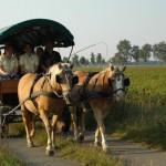 Planwagentour