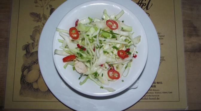 Asiatischer Kohlsalat mit Hühnerstreifen