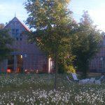 Sagasfeld mit Blumenwiese