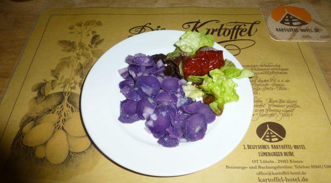 Kartoffelsalat – violett