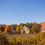 Rundlingsdorf Sagasfeld mitten in der Natur