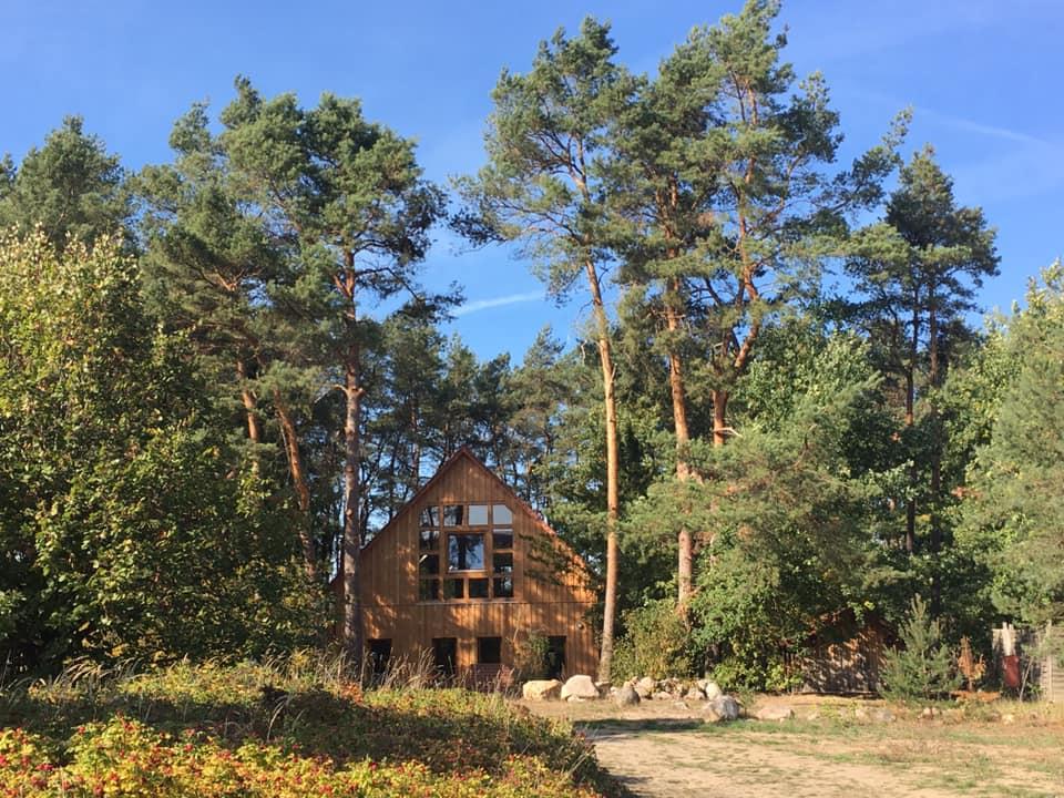 Yoga im neuen Waldhaus