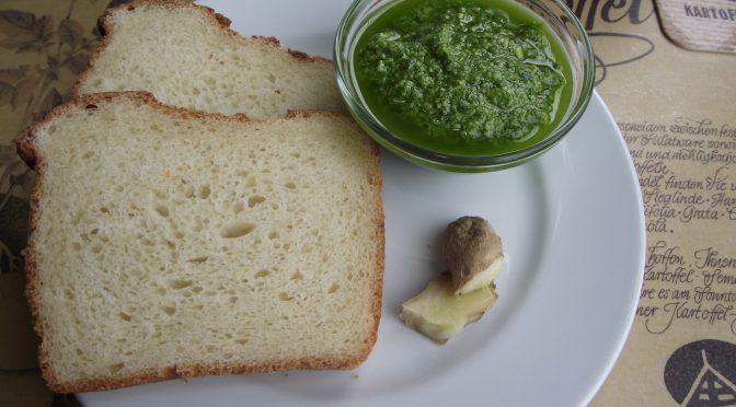Frisches Bärlauch-Pesto